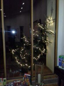 Weihnachtsbaum Mainz